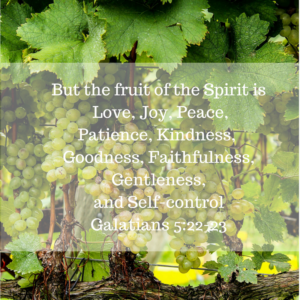 Fruit of the Spirit, Galatians, joy, bitterness