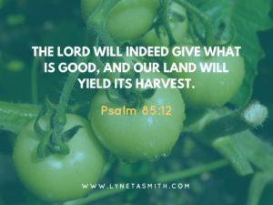 When God Grants an Unexpected Harvest, Garden, drought